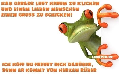 GB BILD frosch gruß by linkpix grün