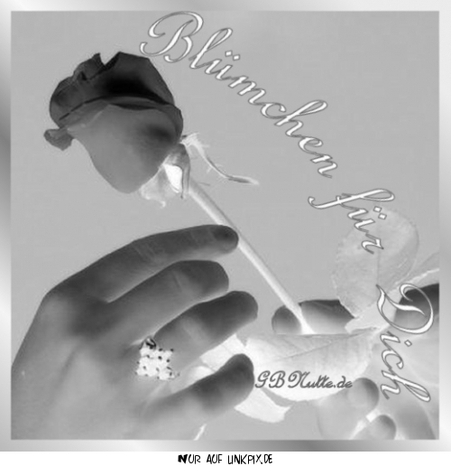 gbpics Blumen für dich
